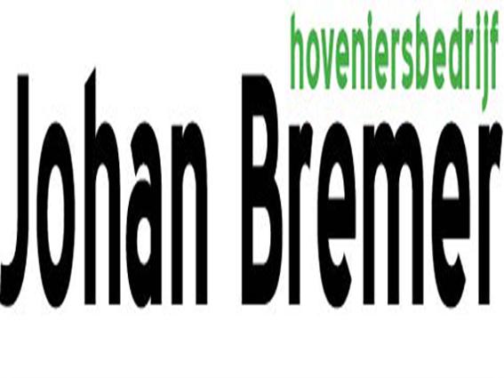 Johan Bremer